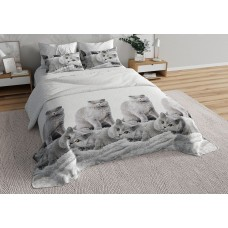 BRUNO КПБ 1,5-спальный Британцы